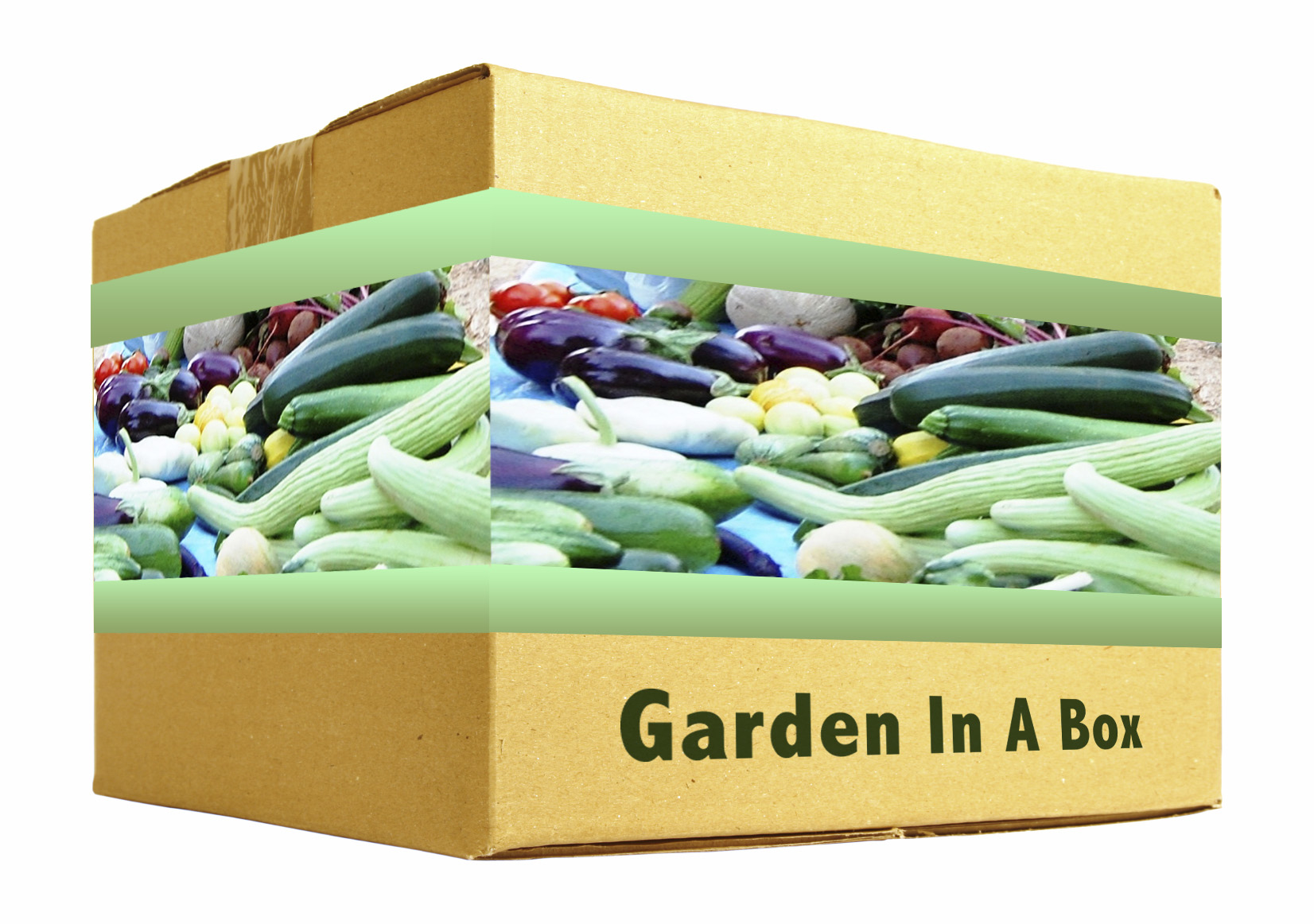 Garden In A Box 1K Little Light Studios